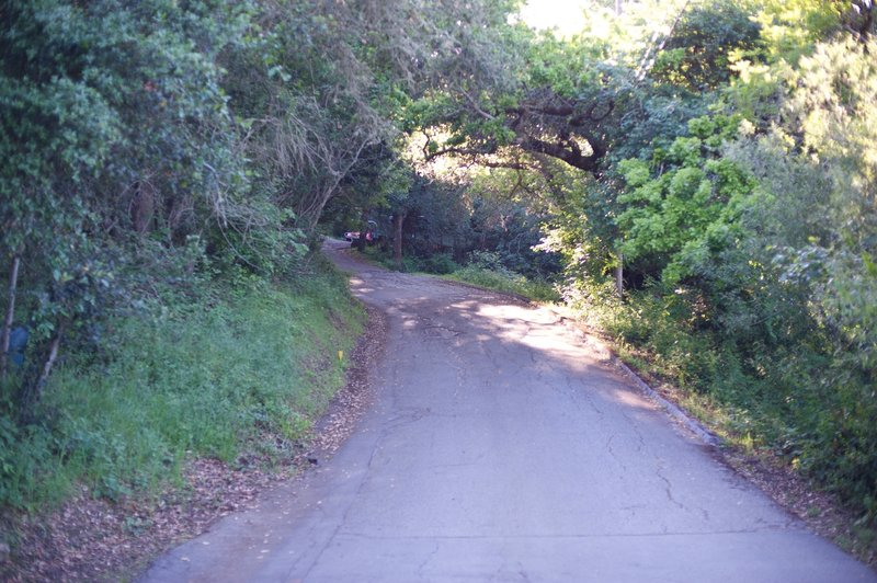 The trail climbs along the road before it enters the woods and becomes a gravel road.
