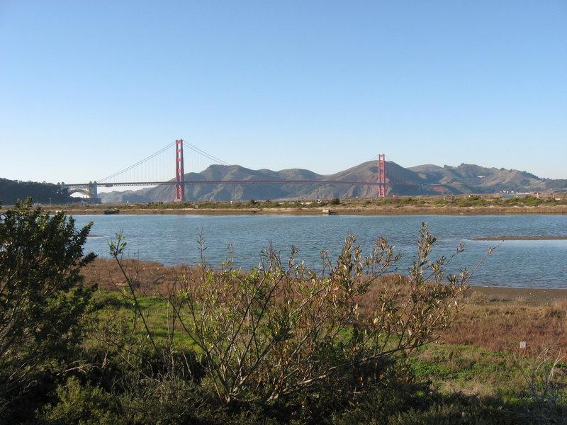 Chrissy Field view.