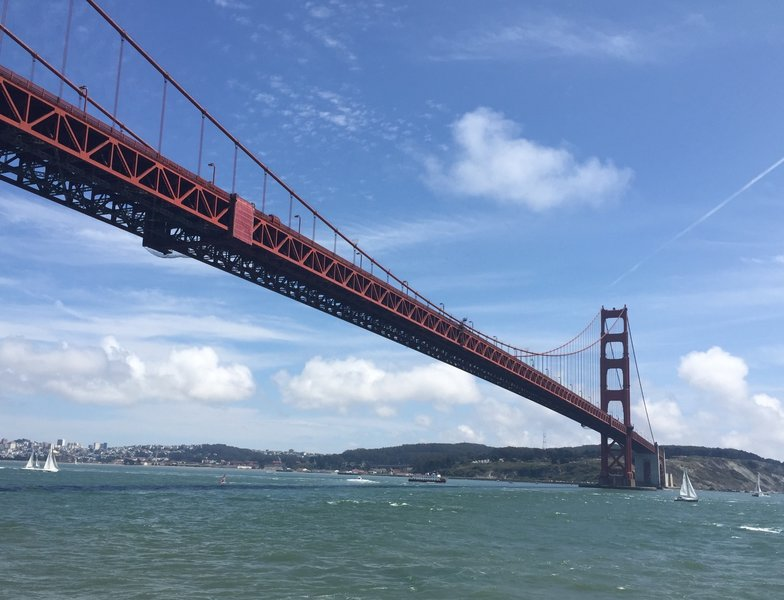 Looking up at the Golden Gate bridge.