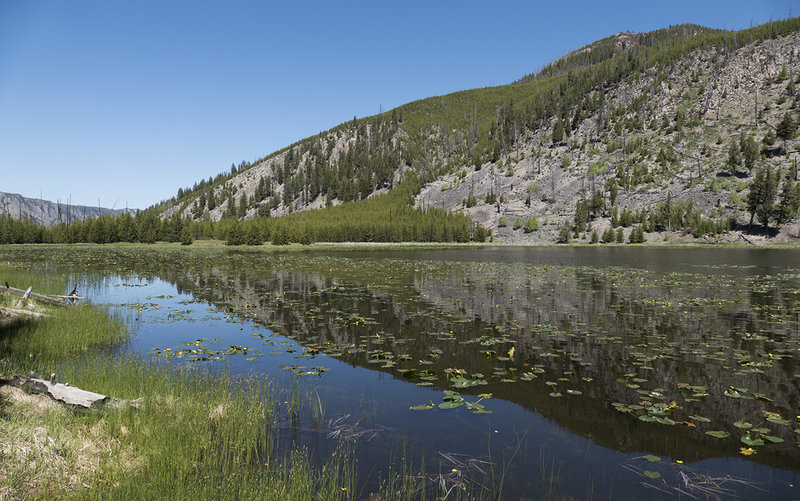 Harlequin Lake from the shoreline