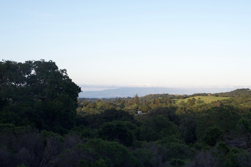 Limited views of the San Francisco Bay come into view as the trail climbs.