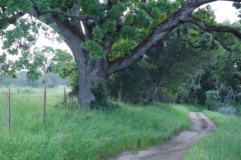 The trail follows private property for a short distance.