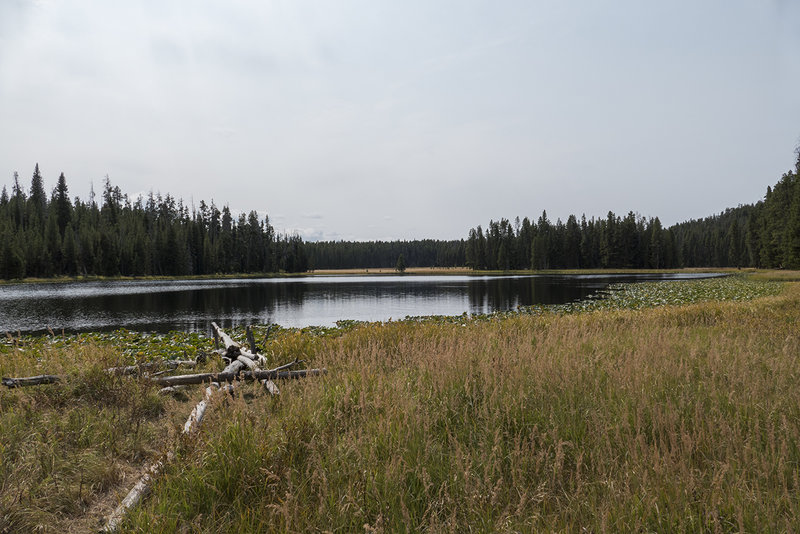 View of Ribbon Lake from the shore.