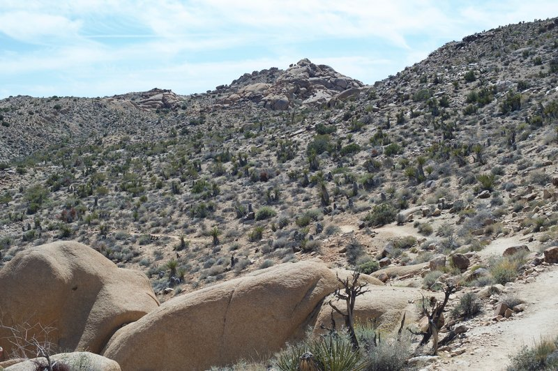 The trail makes its way through the landscape.  There is a lack of shade, so make sure you bring plenty of water and sunscreen.
