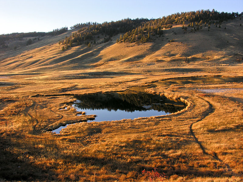 Blacktail Ponds. Late October sunset. with permission from Ralph Maughan