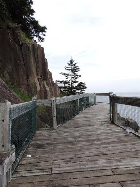 Boardwalk on the cliff side.