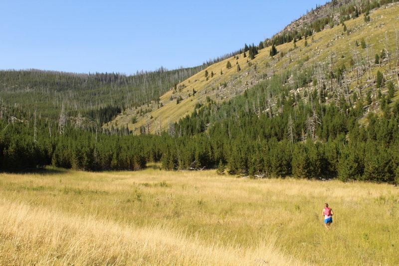 Running up McClellan Creek Trail on the HURL Elkhorn 50M/50K course.
