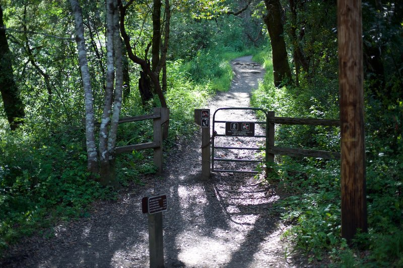 The Hamms Gulch Trail re-enters the preserve as it begins climbing away from the creek.