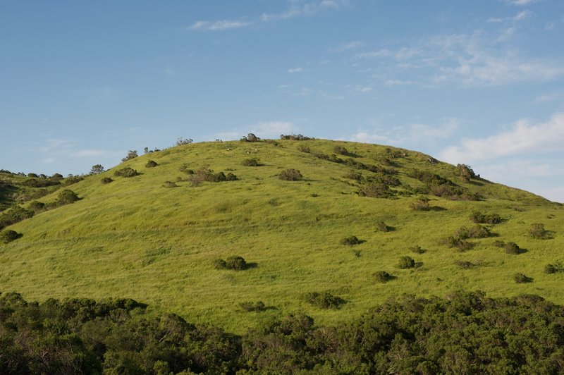The Anniversary Trail makes its way up Windy Hill.