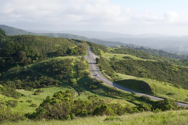 Skyline Boulevard runs just outside the preserve. If you don't want to climb to the top, you can drive to the parking lots on either side of the hill.