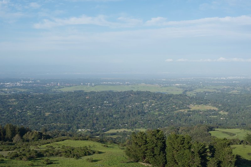 Stanford Dish area and the San Francisco Bay beyond on a hazy day from the summit of Windy Hill.