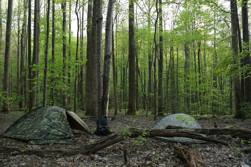 Backcountry Camp 21. Dusk.