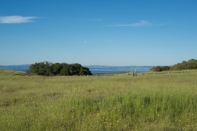 Views of San Francisco Bay are off to the right hand side of the trail.