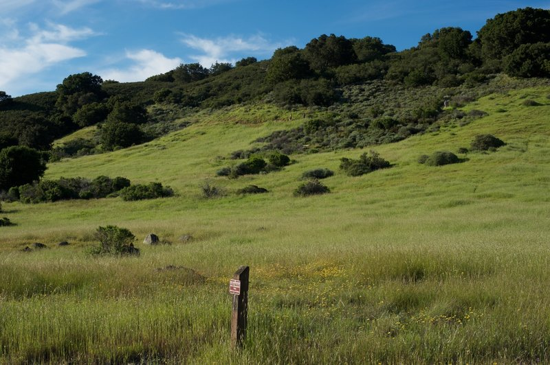 Hikers can be seen on the Ridgeview Trail, which runs parallel to the Sunset Trail on the hillside above.
