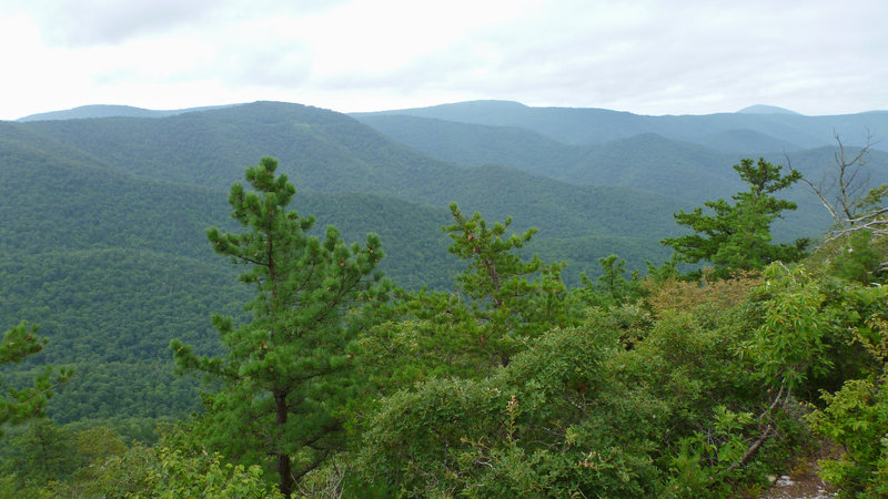 Looking out from the Brown Mountain Trail.