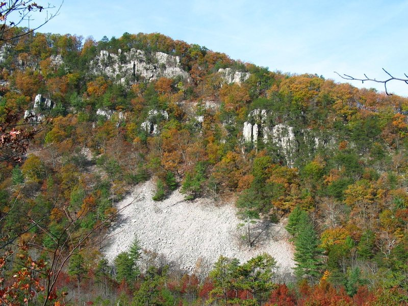 Looking toward the talus cliffs on Rockytop Mountain. with permission from rootboy