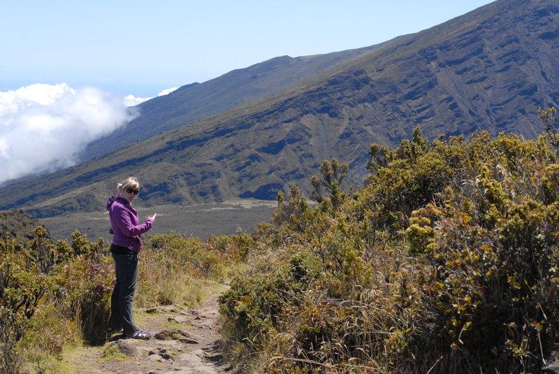 Discoveries along the Halemau'u Trail.