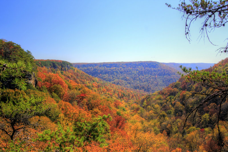 The view down valley from Fiery Gizzard.