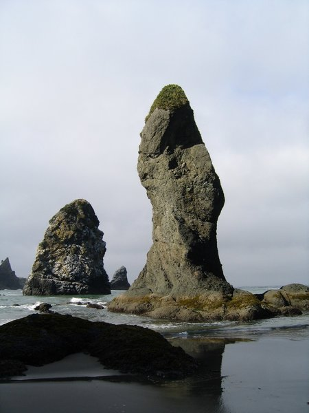 Sea stacks rising out of the water.