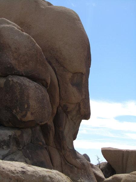 Face Rock