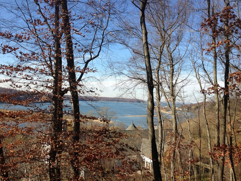 View of the harbor from behind the Cold Spring Harbor Library
