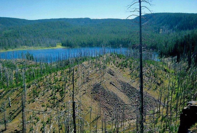 Mallard Lake lies nestled in the trees.