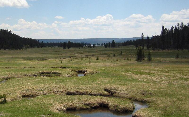 DeLacy Meadows headed to Shoshone Lake.