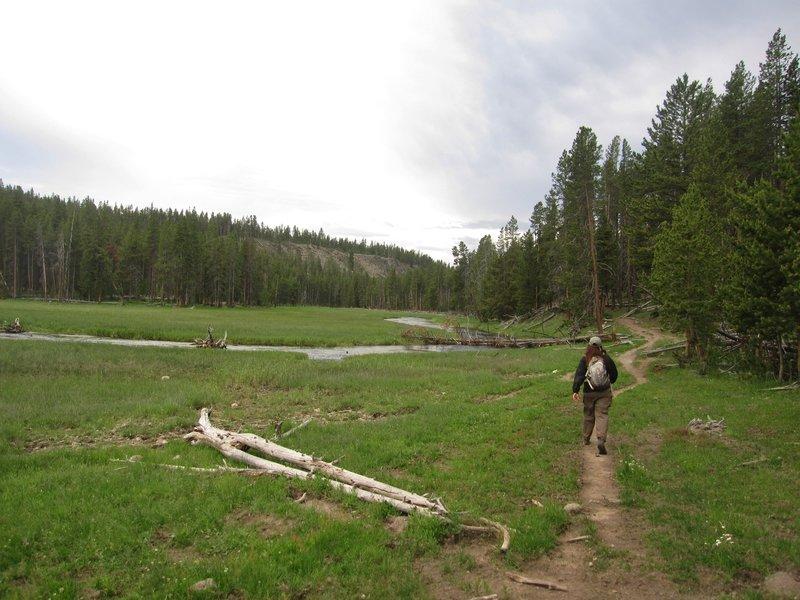 Hiking west along Nez Perce Creek.