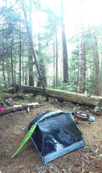 One of the hillside camp sites at the north end of the lake (not waterfront)