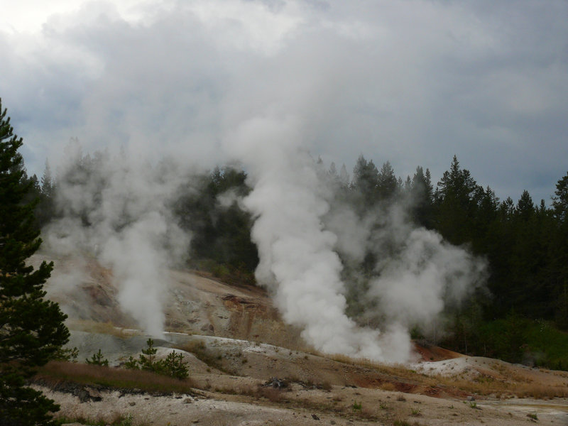 Fumaroles, Norris Geyser Basin, Yellowstone