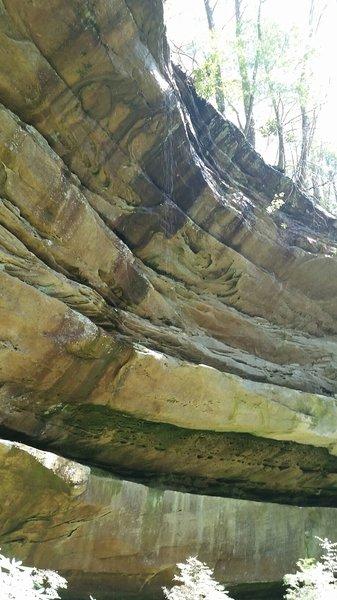 Middle Creek Nature Loop #REIEMPLOYEE