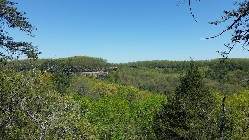 From the top of the arches! Finally a view. I felt like I was looking for this the entire weekend of camping. The Cumberland Plateau is a beautiful place. #REIEMPLOYEE