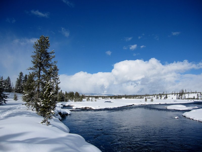 The Down River Ski Loop goes right along the Madison River for a good ways.