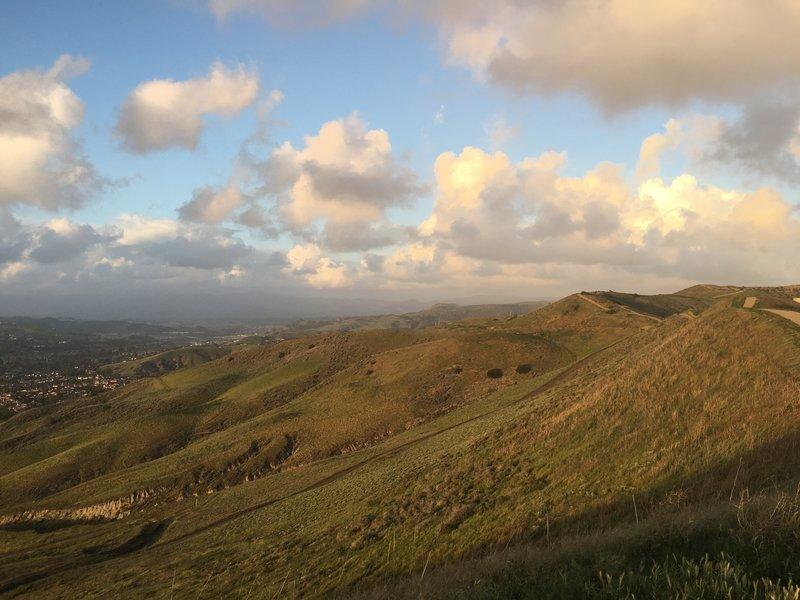 A hill full of trails