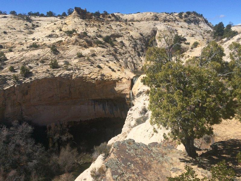 View of Upper Calf Creek Falls.