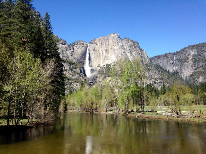 Yosemite falls  viewed from swinging bridge.