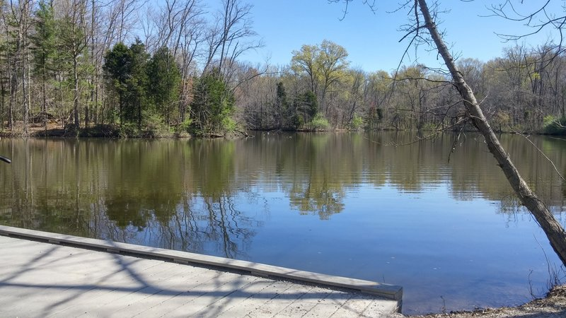 View of the Powel Crosley Lake from the boardwalk