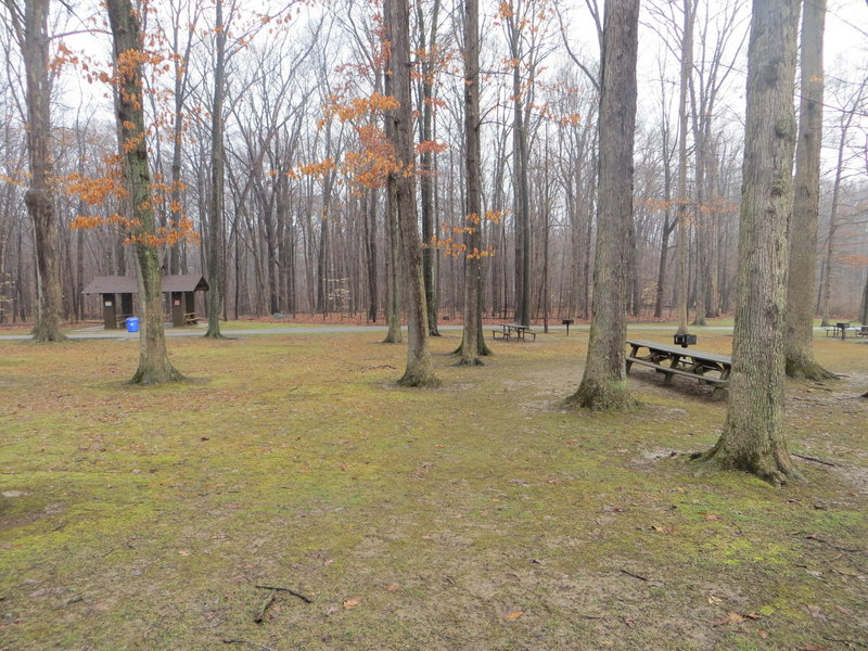 The trail crosses straight through this picnic area and continues on the other side.