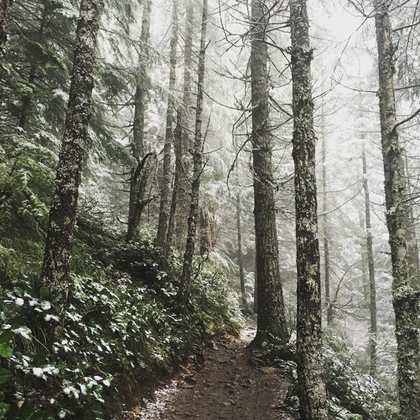 Mount Si Trail, Mar 27, 2016