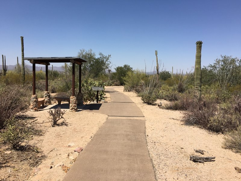 Shady shelters exist along the Discovery Trail.
