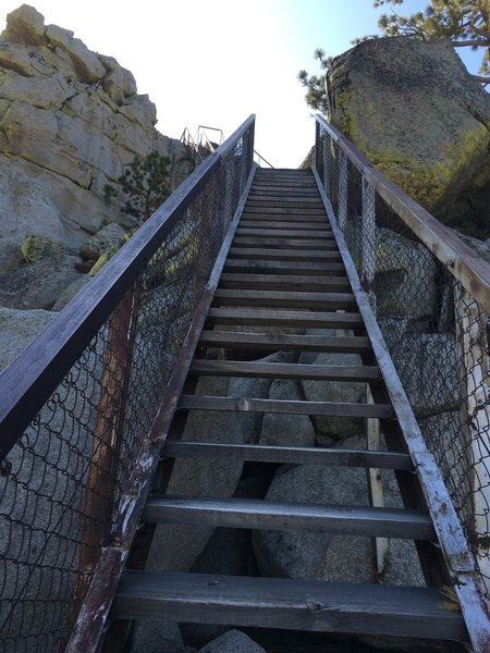 Part of the stairway up to the lookout.
