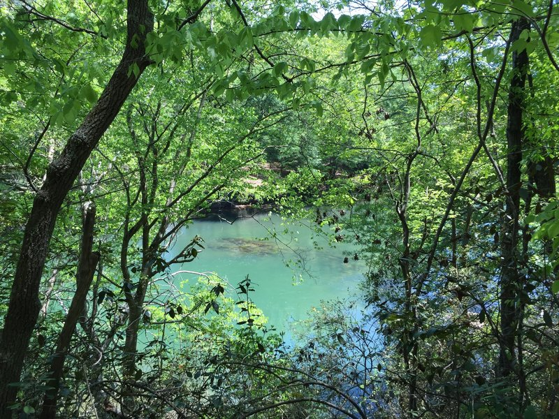 All the shades of blue and green. The Chattahoochee River through the trees.
