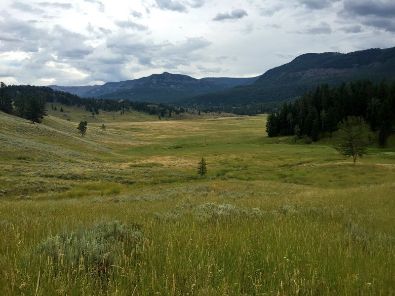 The Soldiers Trail enters Slough Creek's First Meadow from the west.