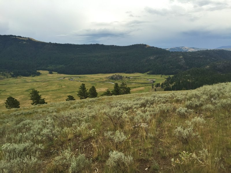 Looking south over the Slough Creek's First Meadow from a ridge just off the Buffalo Fork Trail.