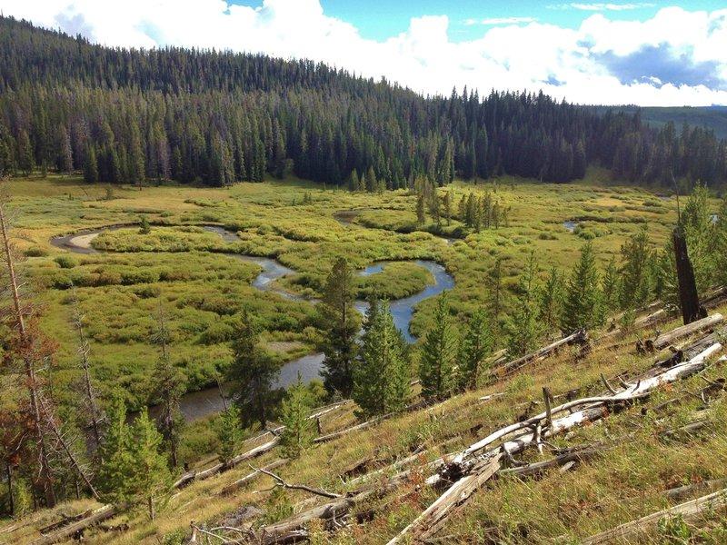 Beautiful oxbow bends in Fan Creek.