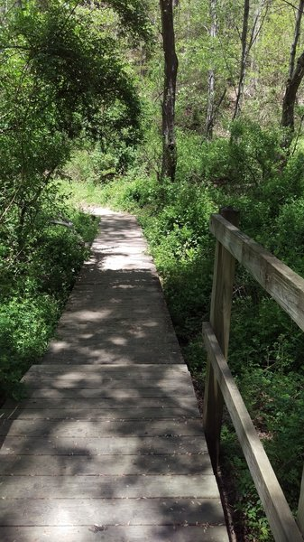 Bridge crossing on Kilgore Falls Trail.