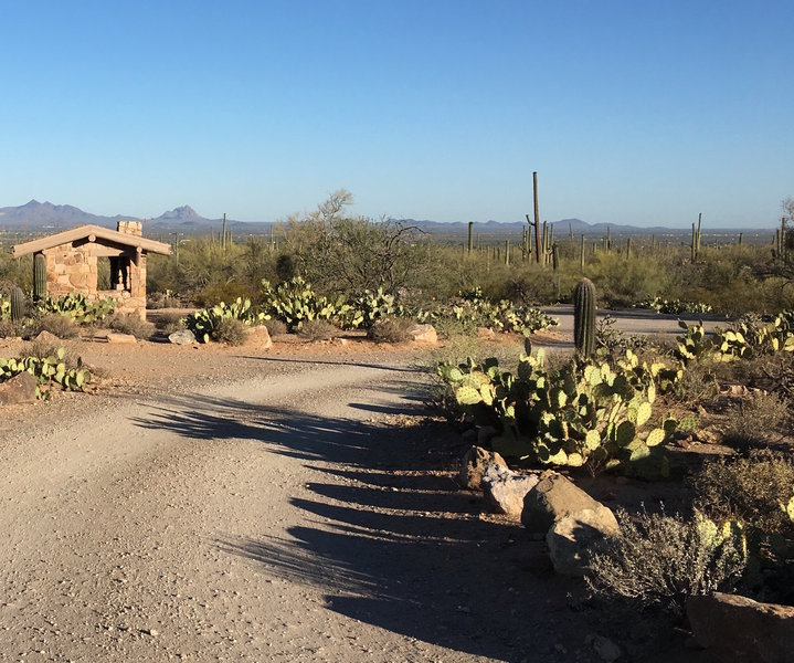 Signal Hill picnic area offers several places to have a meal after hiking in the desert.