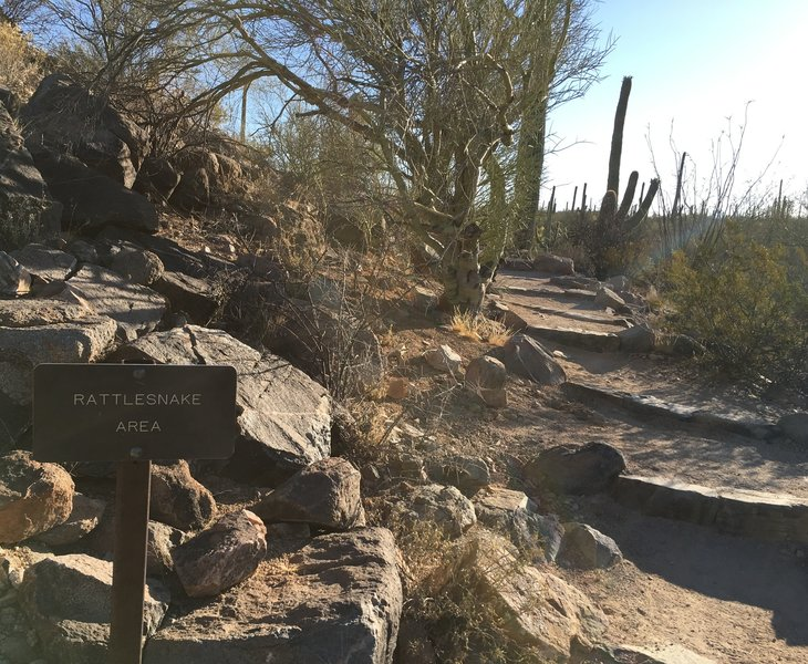 Potential for rattlesnakes exists along the trail.