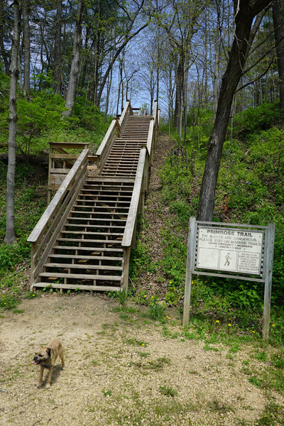 Manual escalator at the trailhead.