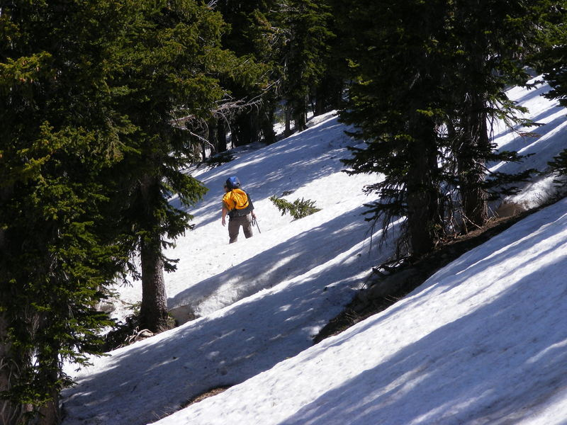Going down the back side of Rendezvous mountain into Granite Canyon.  June 2012.